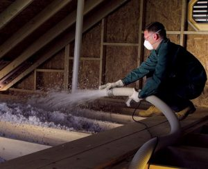 How to Recover from Rodent Insulation Damage